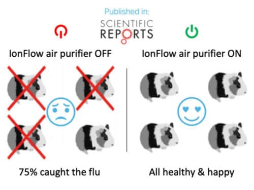 infection rate in scientific tests on guinea pigs infographic